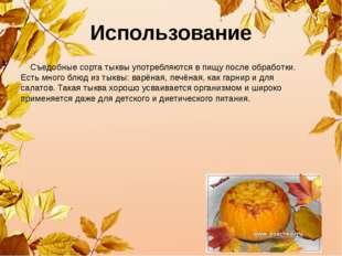 Использование Съедобные сорта тыквы употребляются в пищу после обработки. Ес