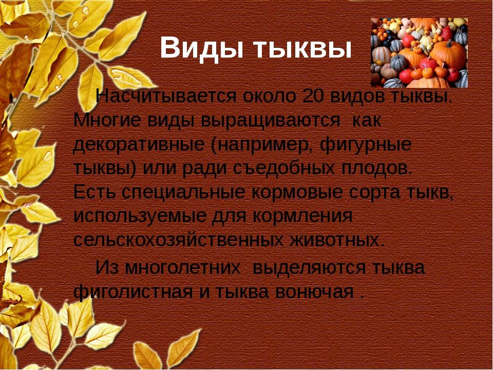 Виды тыквы Насчитывается около 20 видов тыквы. Многие виды выращиваются как д...