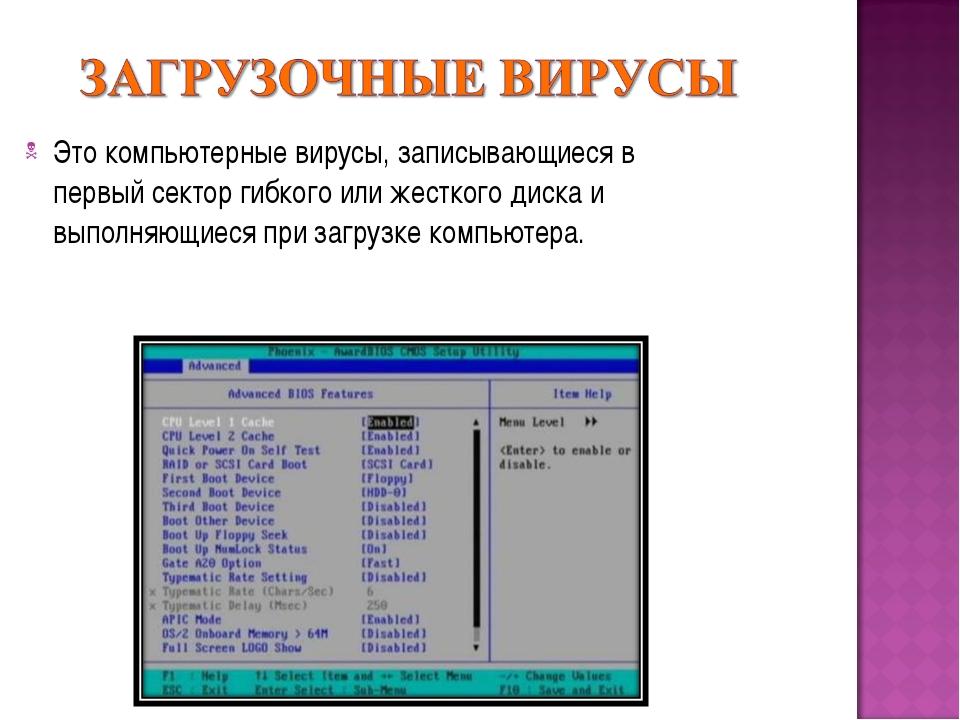 Это компьютерные вирусы, записывающиеся в первый сектор гибкого или жесткого...