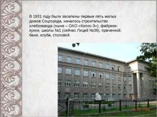 В 1931 году были заселены первые пять жилых домов Соцгорода, началось строите