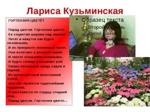 Лариса Кузьминская ГОРТЕНЗИЯ ЦВЕТЁТ Парад цветов. Гортензия цветет. Ее соц