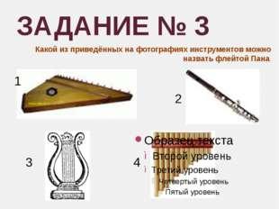ЗАДАНИЕ № 3 Какой из приведённых на фотографиях инструментов можно назвать фл