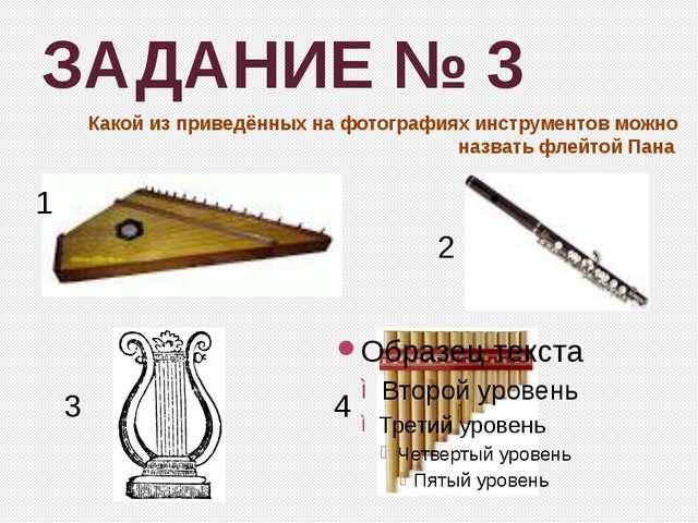 ЗАДАНИЕ № 3 Какой из приведённых на фотографиях инструментов можно назвать фл...