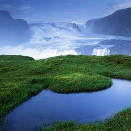 C:\Users\Даша\Desktop\почвы и растительный мир исландии.jpg