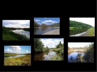 Наиболее крупные притоки: справа — Кобра, Летка, Великая, Молома, Пижма; слев