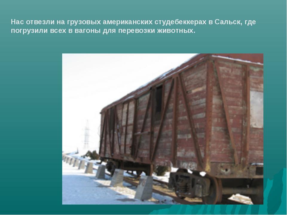 Нас отвезли на грузовых американских студебеккерах в Сальск, где погрузили вс...