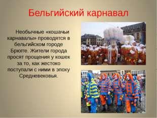 Бельгийский карнавал Необычные «кошачьи карнавалы» проводятся в бельгийском г
