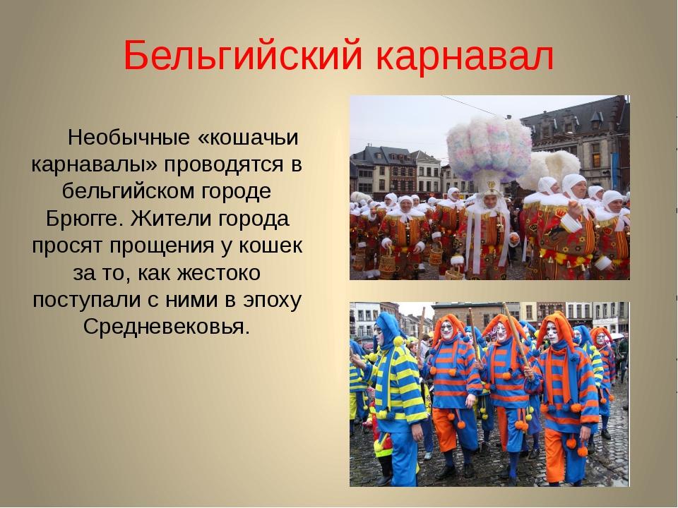 Бельгийский карнавал Необычные «кошачьи карнавалы» проводятся в бельгийском г...