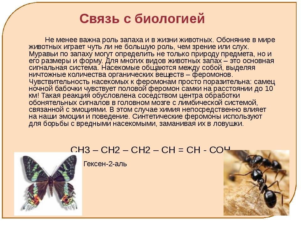 Связь с биологией Не менее важна роль запаха и в жизни животных. Обоняние в...