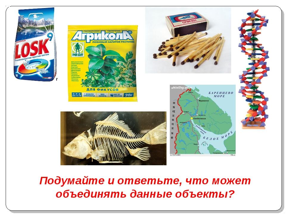 Подумайте и ответьте, что может объединять данные объекты?