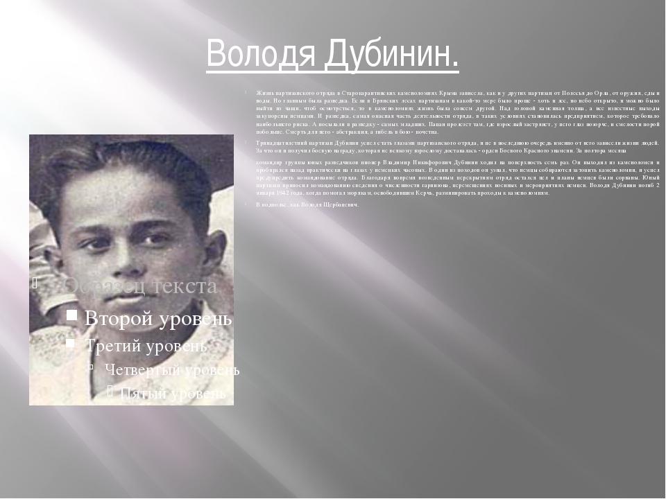 Володя Дубинин. Жизнь партизанского отряда в Старокарантинских каменоломнях К...