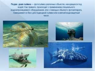 Подво́дная съёмка— фотосъёмка различных объектов, находящихся под водой. Как