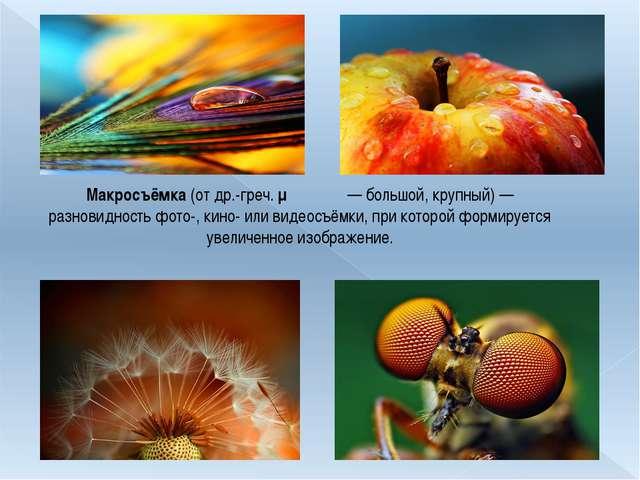 Макросъёмка (от др.-греч. μακρός— большой, крупный)— разновидность фото-, к...