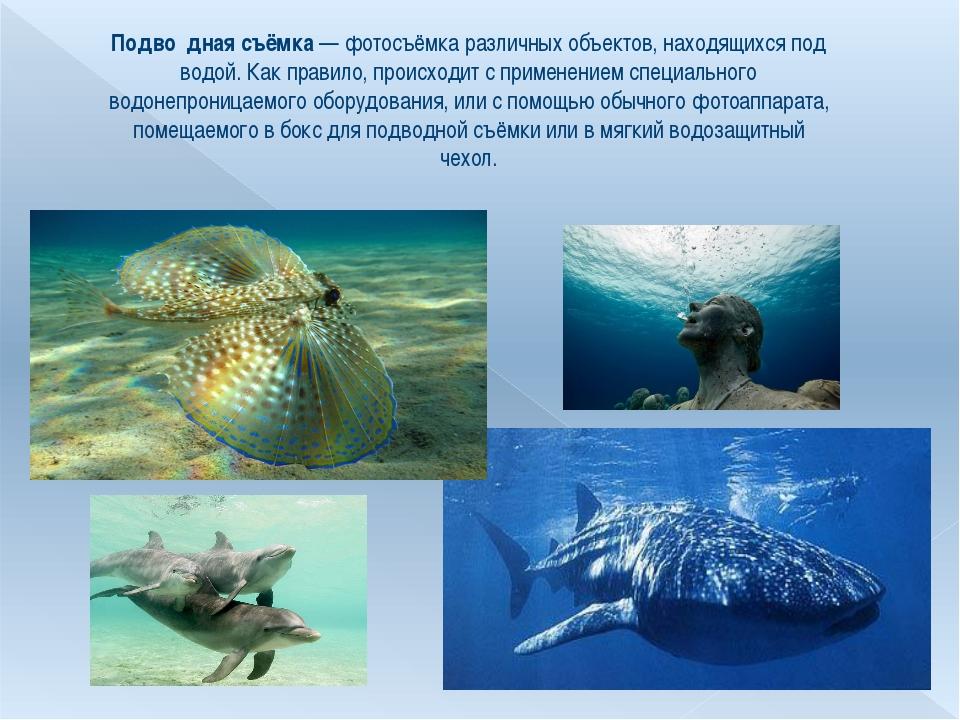 Подво́дная съёмка— фотосъёмка различных объектов, находящихся под водой. Как...