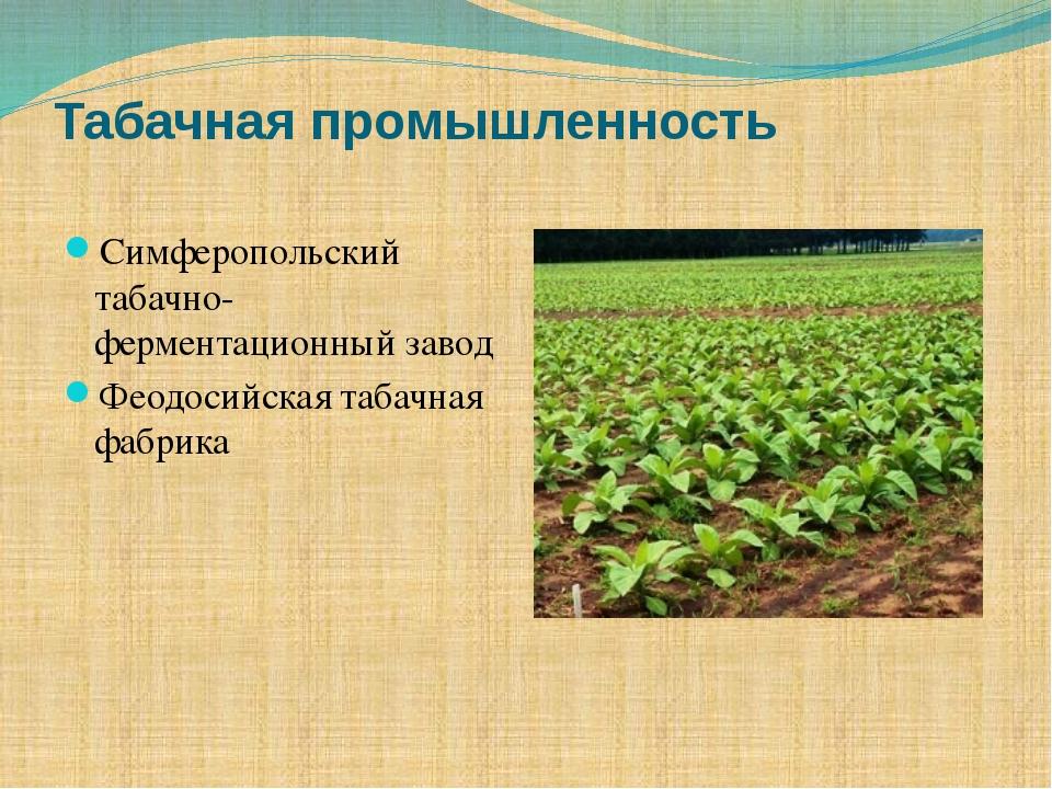 Табачная промышленность Симферопольский табачно-ферментационный завод Феодоси...