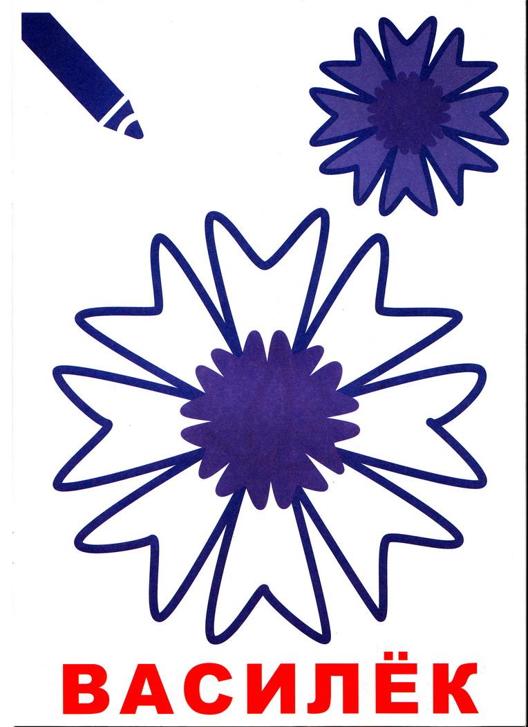 Маленький художник: Цветы. Выпуск 11 Яркое детство