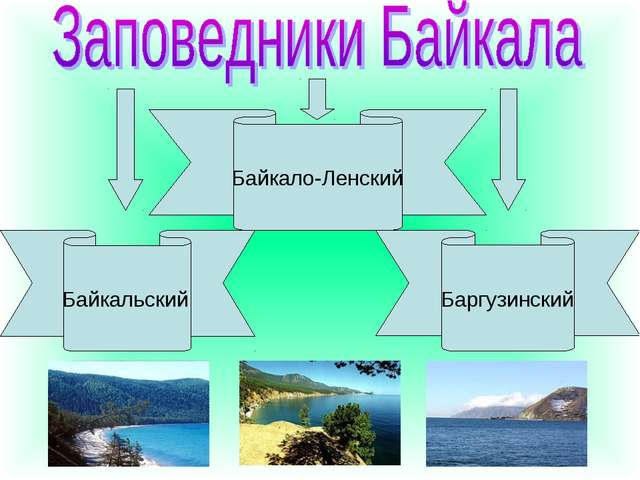Байкальский Байкало-Ленский Баргузинский