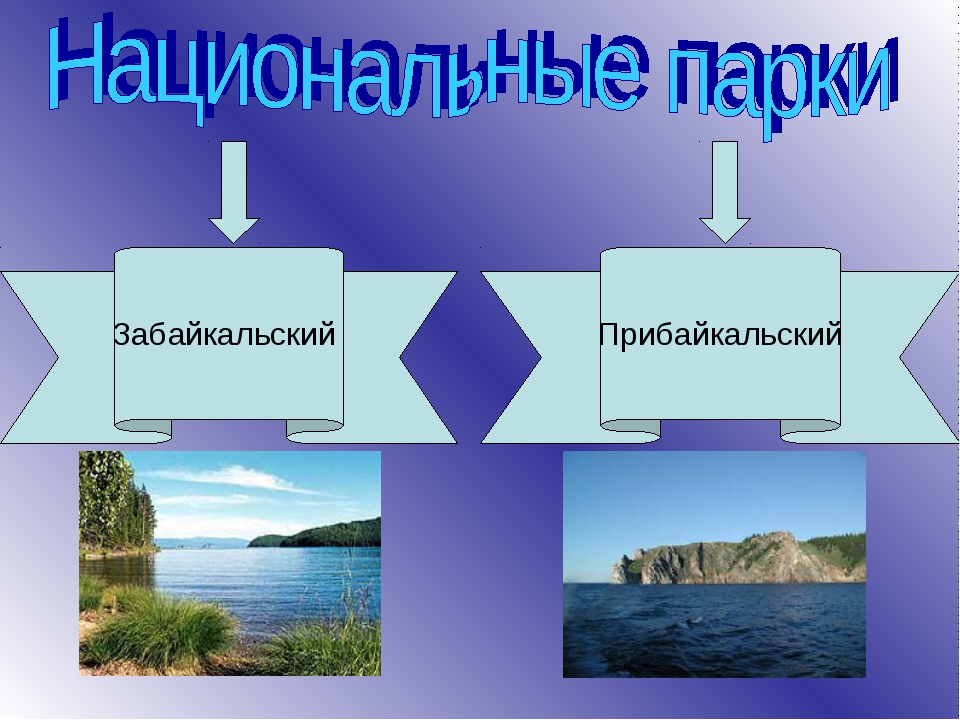 Забайкальский Прибайкальский