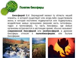 Понятие биосферы Биосферой В.И. Вернадский назвал ту область нашей планеты, в