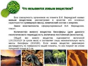 Что называется живым веществом? Всю совокупность организмов на планете В.И. В