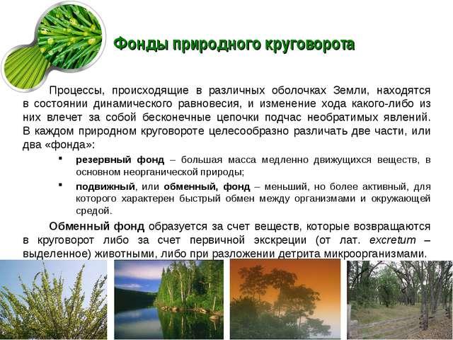 Фонды природного круговорота Процессы, происходящие в различных оболочках Зем...