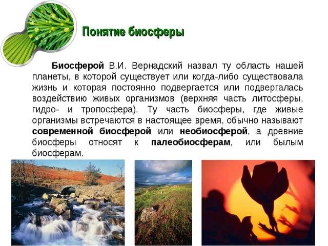 Понятие биосферы Биосферой В.И. Вернадский назвал ту область нашей планеты, в...