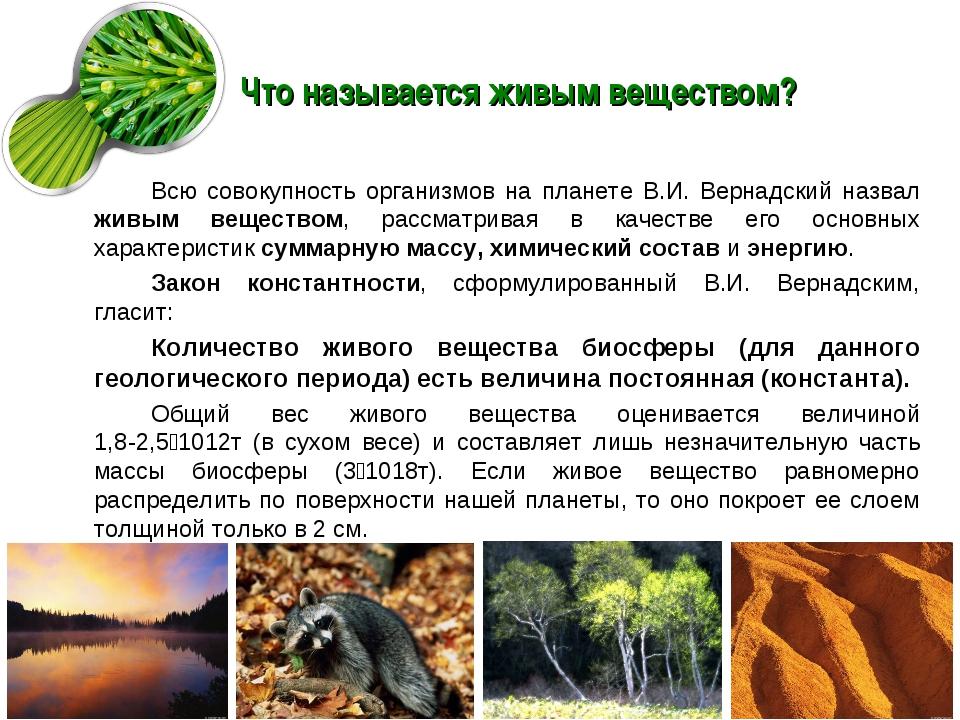 Что называется живым веществом? Всю совокупность организмов на планете В.И. В...