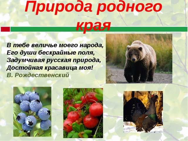 Природа родного края В тебе величье моего народа, Его души бескрайные поля,...