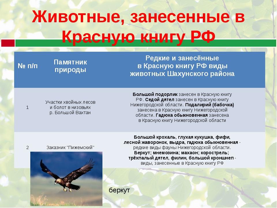 птицы нижегородской области занесенные в красную книгу встречают новогодние праздники