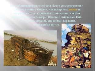 Бог заблаговременно сообщил Ною о своем решении и дал ему точные указания, ка
