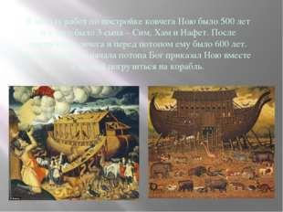К началу работ по постройке ковчега Ною было 500 лет и у него было 3 сына – С