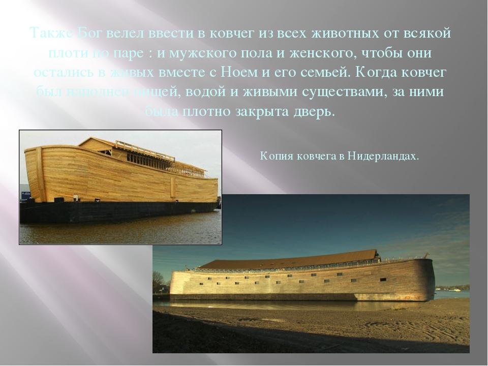Также Бог велел ввести в ковчег из всех животных от всякой плоти по паре : и...
