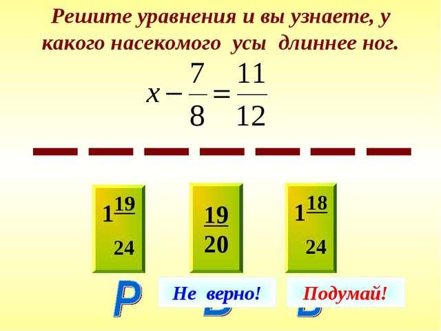 Решите уравнения и вы узнаете, у какого насекомого усы длиннее ног. 119 24 19...