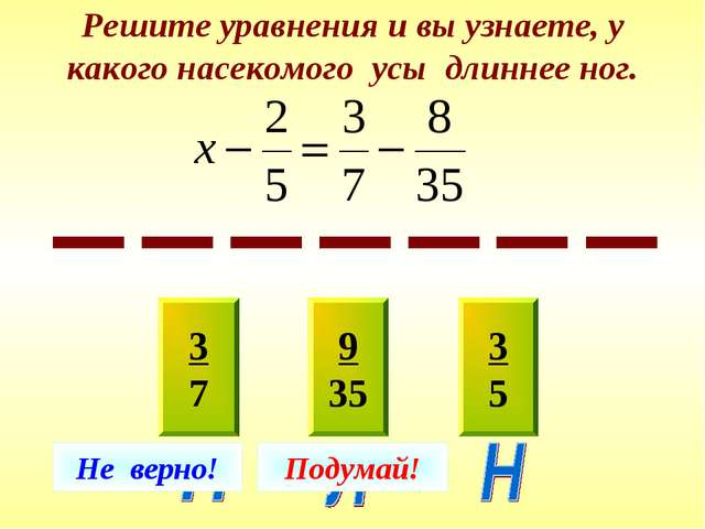Решите уравнения и вы узнаете, у какого насекомого усы длиннее ног. 3 7 9 35...