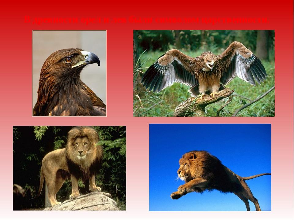 В древности орел и лев были символом царственности.