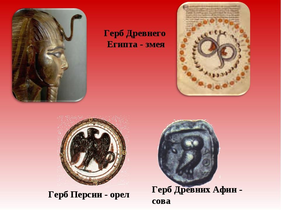Герб Древнего Египта - змея Герб Персии - орел Герб Древних Афин - сова