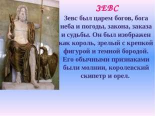 ЗЕВС Зевс был царем богов, бога неба и погоды, закона, заказа и судьбы. Он бы