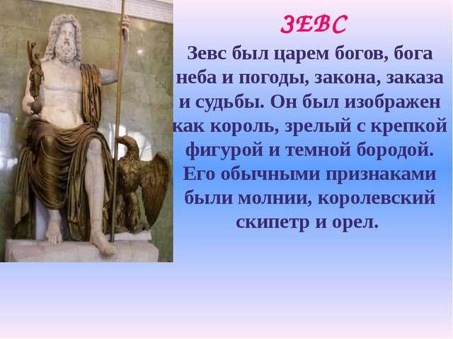 ЗЕВС Зевс был царем богов, бога неба и погоды, закона, заказа и судьбы. Он бы...