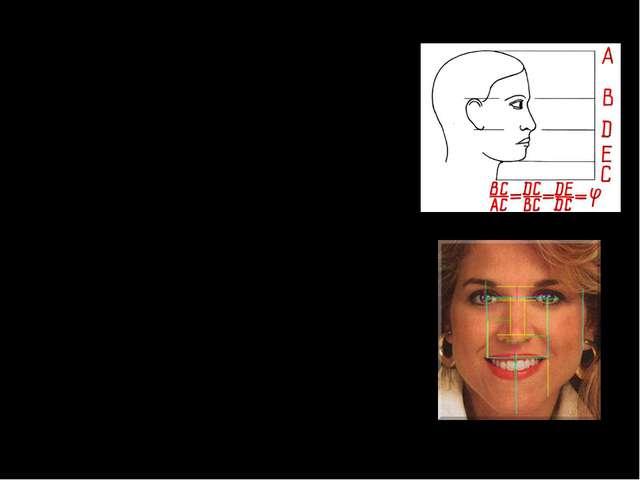В строении черт лица человека также есть множество примеров, приближающихся...
