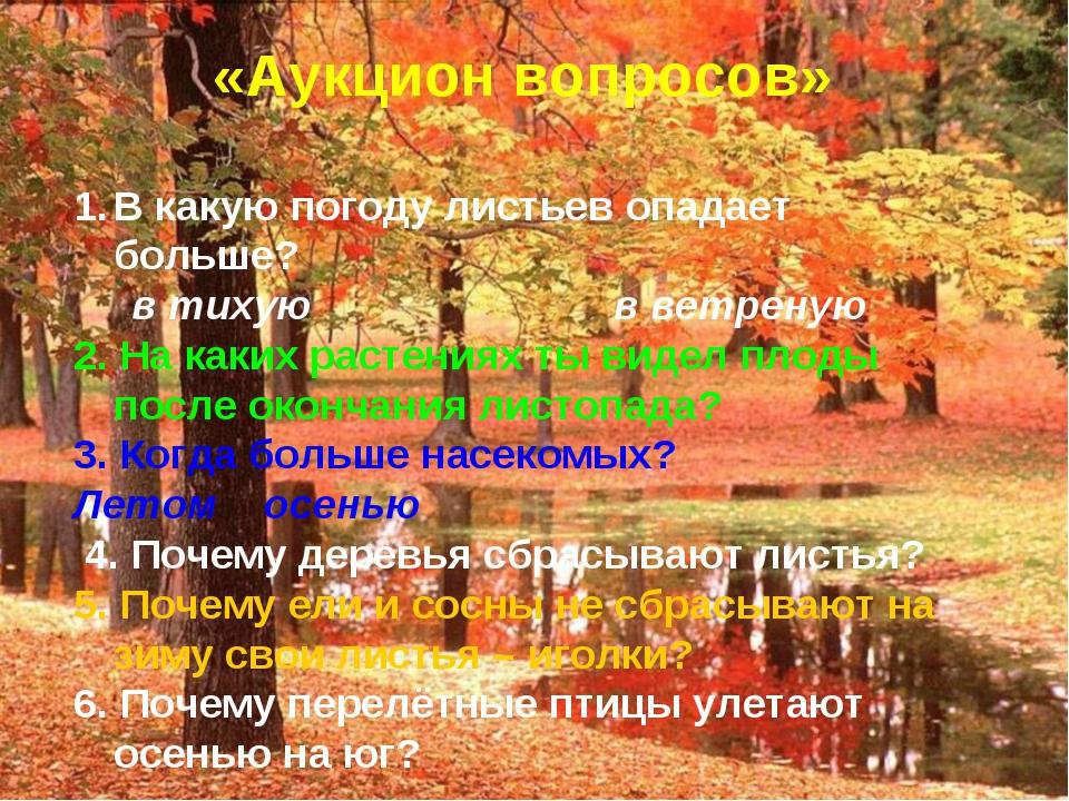 «Аукцион вопросов» В какую погоду листьев опадает больше? в тихую в ветреную...