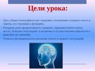 Цели урока: Дать общие топографические сведения о положении головного мозга в