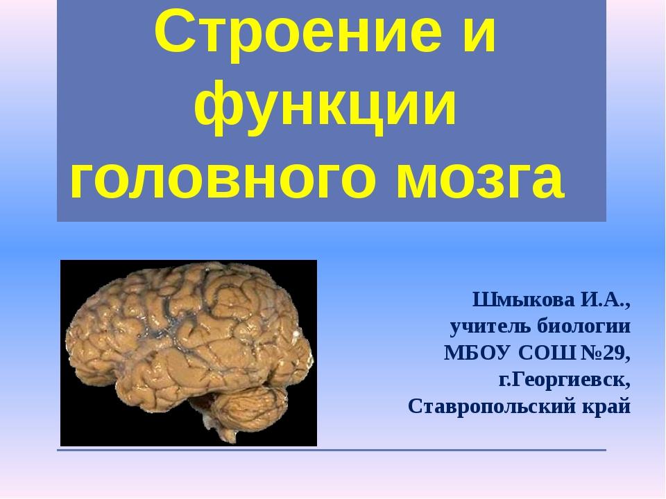 Строение и функции головного мозга Шмыкова И.А., учитель биологии МБОУ СОШ №...