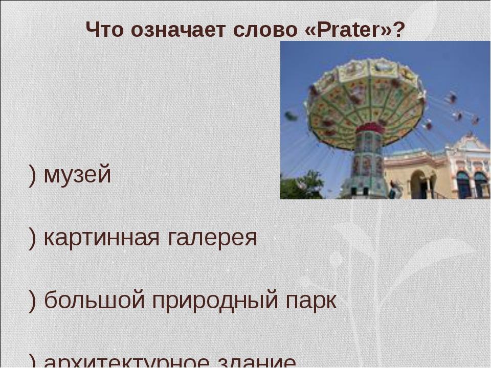 Что означает слово «Prater»? а) музей б) картинная галерея в) большой природ...