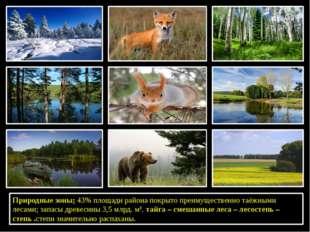 Природные зоны: 43% площади района покрыто преимущественно таёжными лесами;