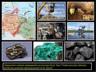 Определите какими природными ресурсами богат Урал? Какие ресурсы явились баз