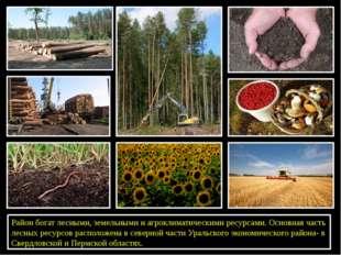 Район богат лесными, земельными и агроклиматическими ресурсами. Основная час
