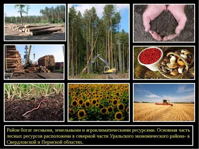 Район богат лесными, земельными и агроклиматическими ресурсами. Основная час...
