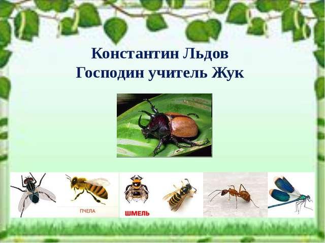 Константин Льдов Господин учитель Жук