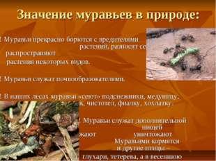 Значение муравьев в природе: ! Муравьи прекрасно борются с вредителями растен