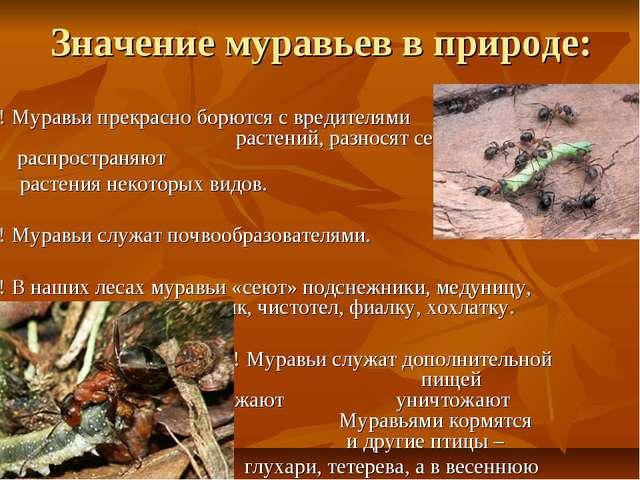 Значение муравьев в природе: ! Муравьи прекрасно борются с вредителями растен...
